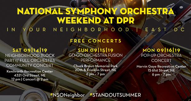 Image for NSO weekend at DPR